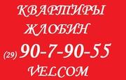квартира на сутки в Жлобине НЕДОРОГО